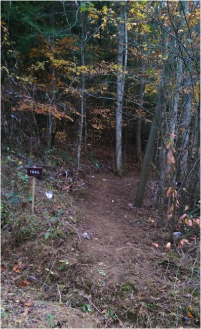 photo of a trail