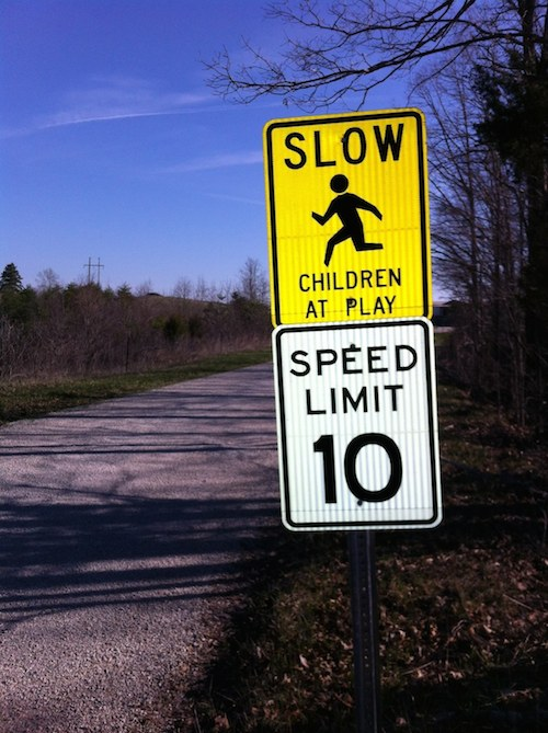 Photo of 10 MPH speed limit and 'SLOW: Children at Play' road signs on Bald Rock Fork Road